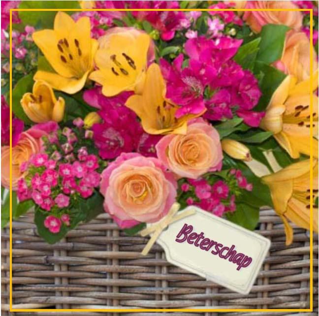 bloem01